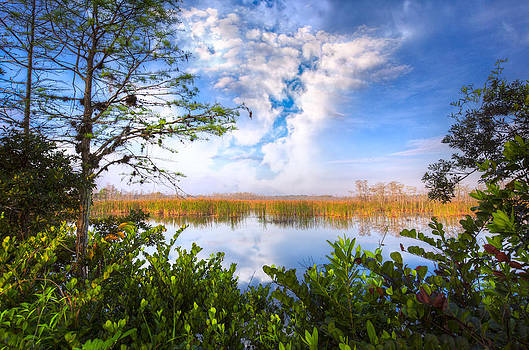 Debra and Dave Vanderlaan - Window to the Everglades