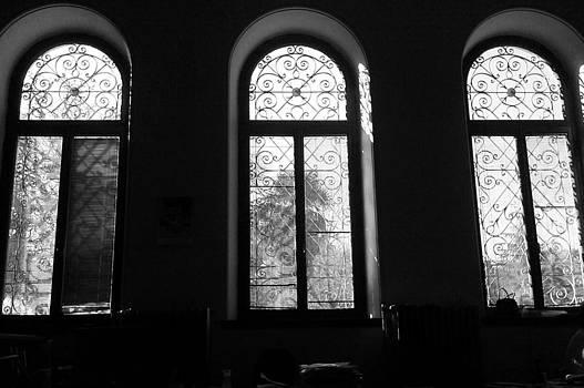 Windows by Fethi Canbaz