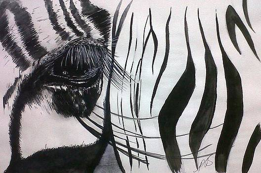 Windows I Zebra. by Paula Steffensen