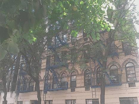 Windows in The Village New York City by Ricardo  De Almeida