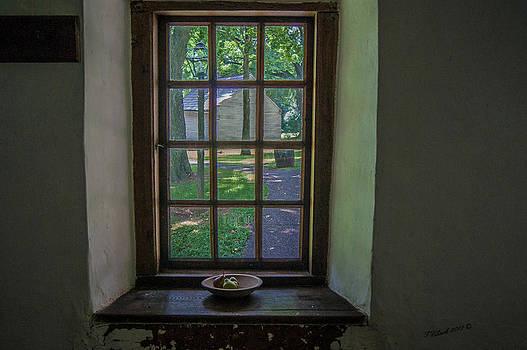Windowsill by Timothy Clinch
