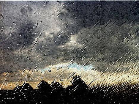 Windshield by Tiffany Conn