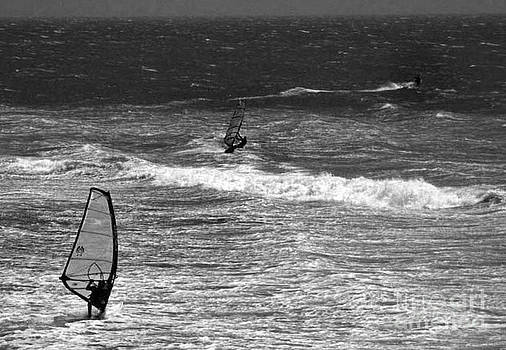 Windsurfing  by Chris Berry