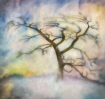 Angela A Stanton - Windswept