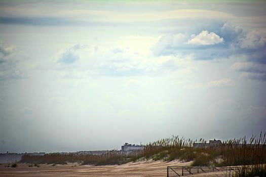 Judy Hall-Folde - Windswept Beach