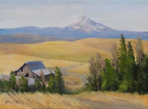 Windswept by Karen Ilari