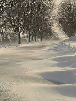 Windswept Snow by Patricia McKay
