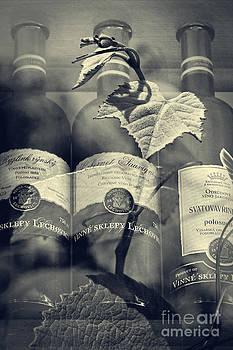 Wine - Beginning and the End by Martin Dzurjanik