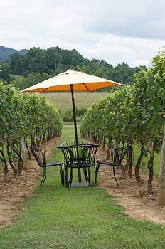 Winery by Heidi Poulin