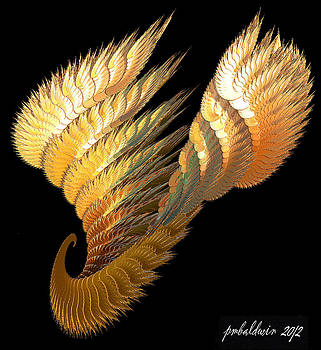 Winged Curl by Patrice Baldwin