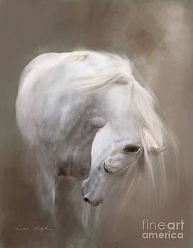 Wingless by Dorota Kudyba