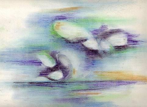Wings by Meena  Chopra