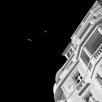 Wings over Paris by Peter Falkner
