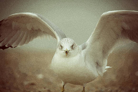 Karol  Livote - Wings2