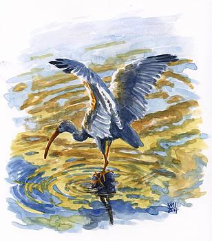 Wingspread by Ken Meyer jr