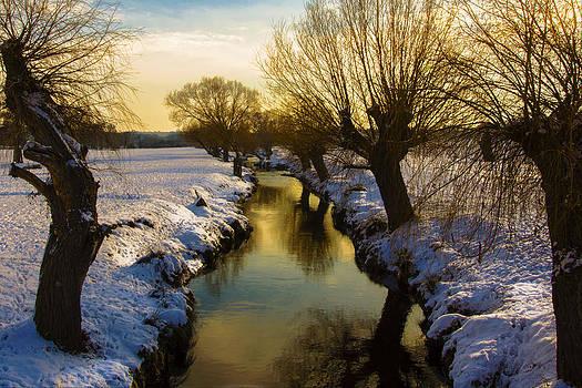 Winter 4 by Matthew Bruce