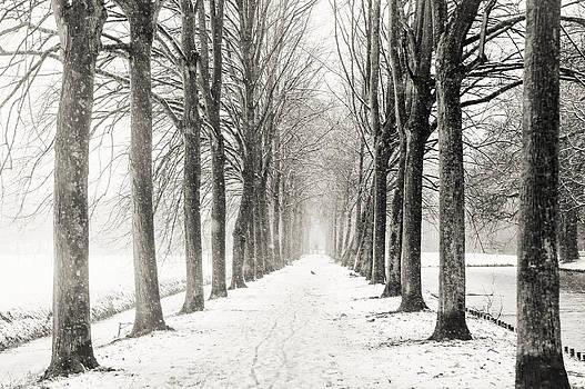 Jenny Rainbow - Winter Alley in Rhoon. Holland. Black N White