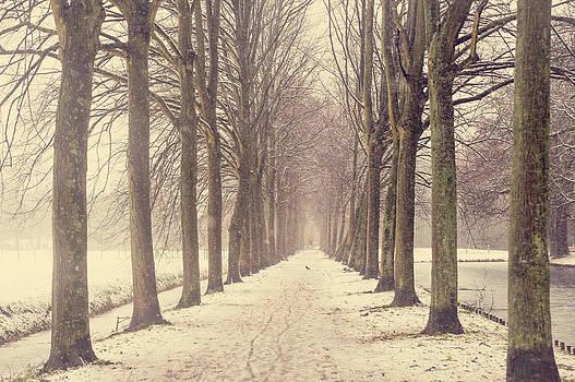 Jenny Rainbow - Winter Alley in Rhoon. Holland
