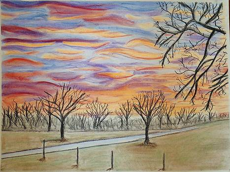 Winter Approaches by Cindy Lawson-Kester
