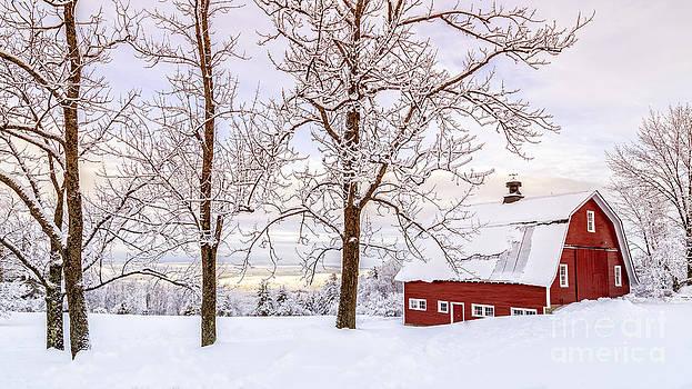 Edward Fielding - Winter Arrives