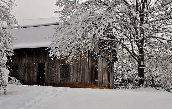 Winter Barn by Eric Haggart