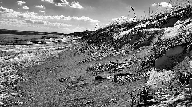 Winter Beach  by Nancie DeMellia