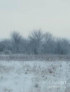Winter blues by Marija Djedovic
