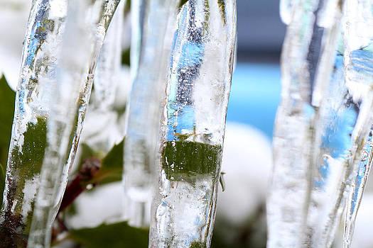 Scott Hovind - Winter Blues