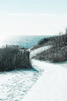 Winter by the sea by Allan Millora