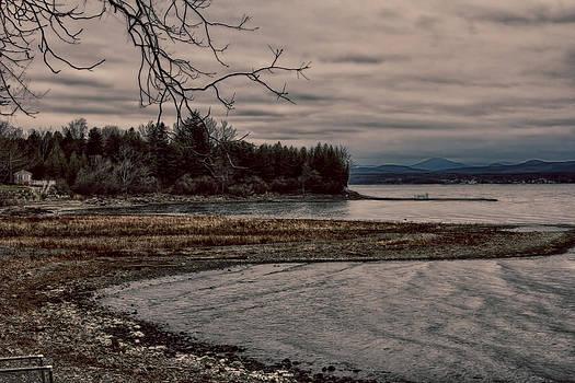 Winter Cove by Patricia Davis
