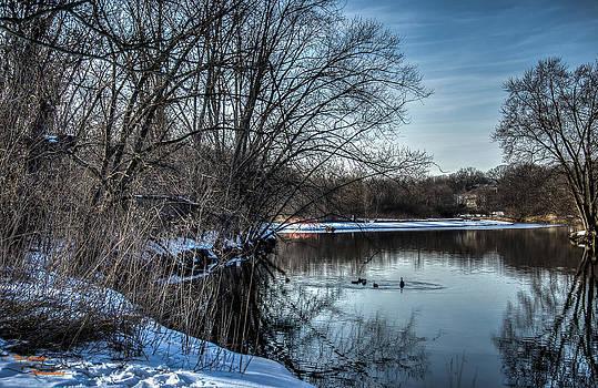 Winter Creek 2 by Dan Crosby