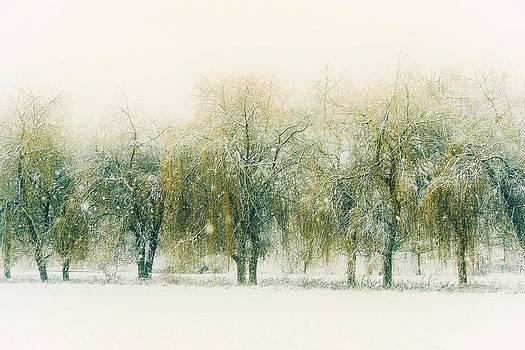 Thomas Christoph - Winter Day