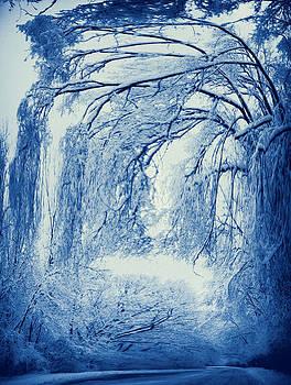 Winter digitally by Slawek Sepko