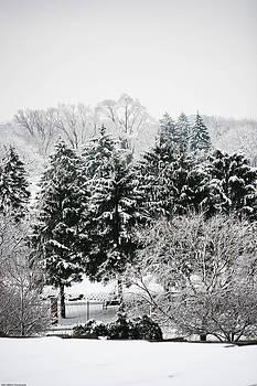 Winter Dream by Allan Millora