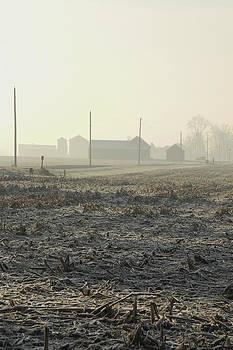Winter Field by Daniel Kasztelan