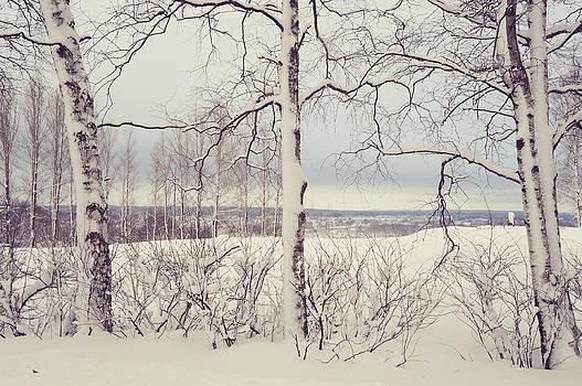 Jenny Rainbow - Winter Fields