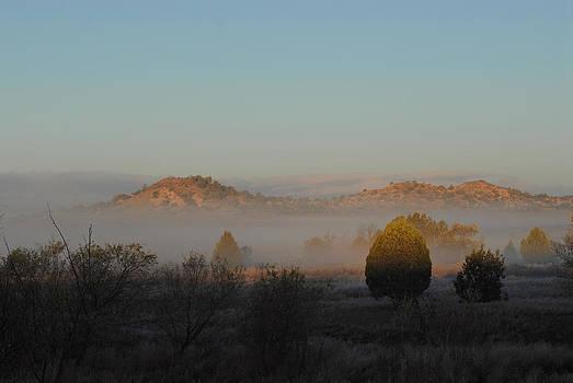 Winter Fog by Kasie Morgan