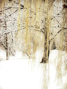 Julie Palencia - Winter Gold