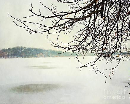 Winter Impressions IIb by Katerina Vodrazkova