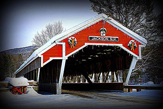 Winter in Jackson by Suzanne DeGeorge