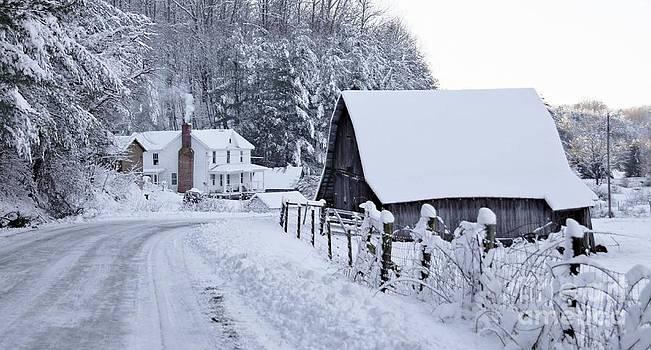 Winter in Virginia by Benanne Stiens