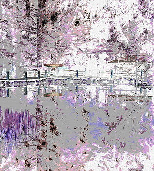 Winter Lake Reflection  by Ann Johndro-Collins