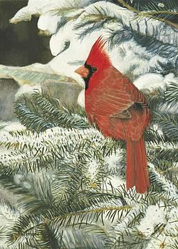 Winter Landing by Pat Gilmore