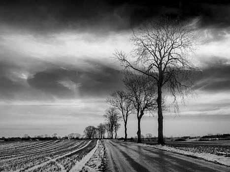 Winter Landscape by Antonio Jorge Nunes