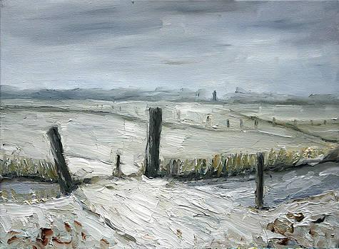 Winter Landscape Netherlands by Nancy Van den Boom