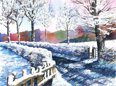 Winter Lane by Barb Capeletti