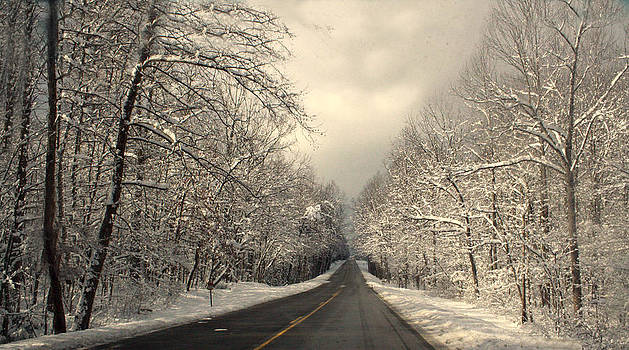 Winter Lane by Heather Palmer
