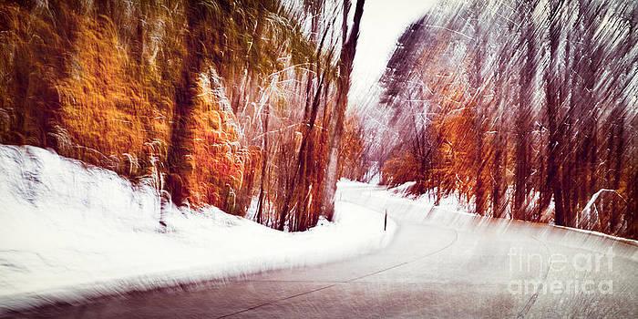 Lisa McStamp - Winter