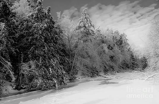 Brenda Giasson - Winter Living in Maine