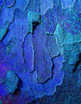 Margaret Saheed - Winter London Plane Tree Abstract 4